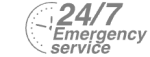 24/7 Emergency Service Pest Control in Carshalton, Carshalton Beeches, SM5. Call Now! 020 8166 9746