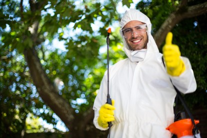 Pest Control in Carshalton, Carshalton Beeches, SM5. Call Now 020 8166 9746